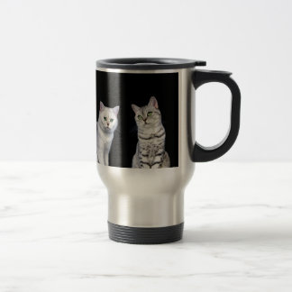 Two british short hair cats on black background travel mug