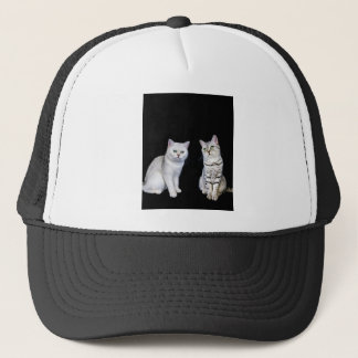 Two british short hair cats on black background trucker hat