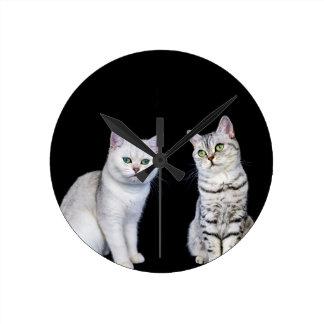 Two british short hair cats on black background wallclock