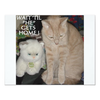 TWO CATS AGAIN PERSONALIZED INVITES