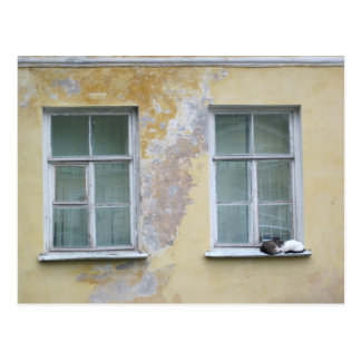 Two cats on a ledge in St. Petersburg, Russia Postcard