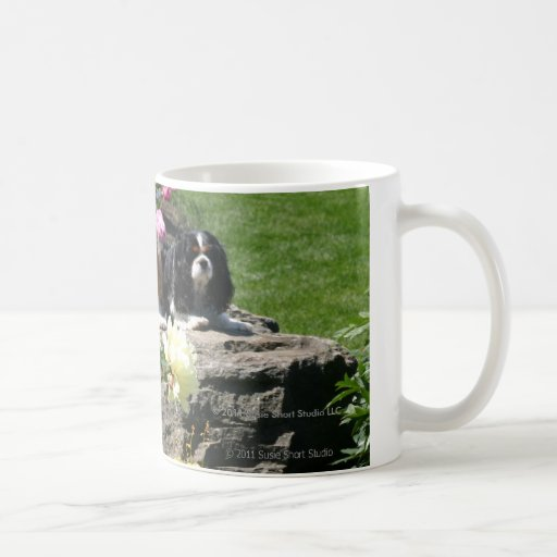 Two Cavaliers in the garden mug