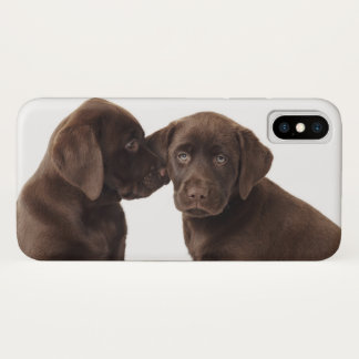 Two chocolate Labrador Retriever Puppies iPhone X Case