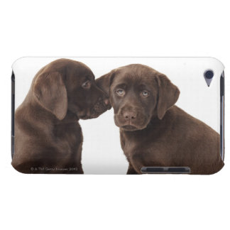 Two chocolate Labrador Retriever Puppies iPod Touch Case-Mate Case
