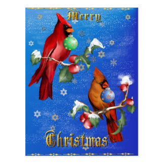 Two Christmas Birds Lettered Postage Postcard