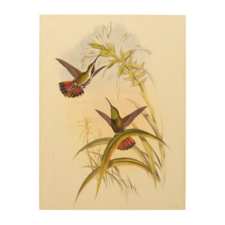 Two Colorful Hummingbirds Aiming for Same Flower Wood Print
