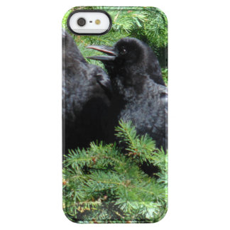 Two Crows Clear iPhone SE/5/5s Case