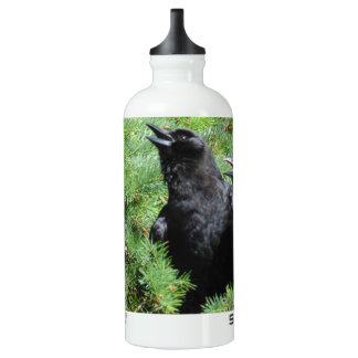 Two Crows SIGG Traveller 0.6L Water Bottle