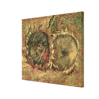 Two Cut Sunflowers, 1887 Gallery Wrapped Canvas