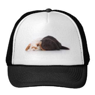 Two cute baby bunnies trucker hats