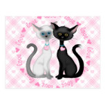 Two Cute Cats in Love Post Card