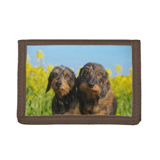 Two Cute Dachshund Dogs Dackel Head Portrait Photo Trifold Wallet