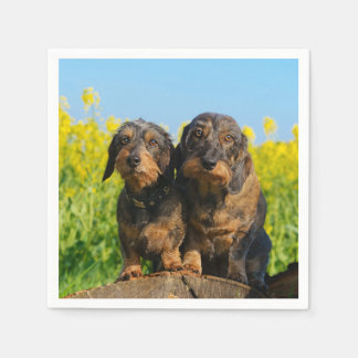 Two Cute Dachshunds Dogs Dackel Friends Pet Photo Disposable Napkins