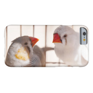Two Cute Finch Birds in Cage Barely There iPhone 6 Case