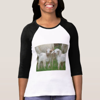 Two Cute White Baby Goats T Shirts