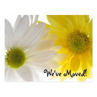 Two Daisies Change of Address Postcard