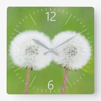Two dandelions square wall clock