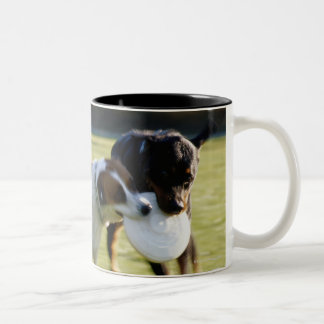 Two Dogs Fighting over Plastic Disc Coffee Mug