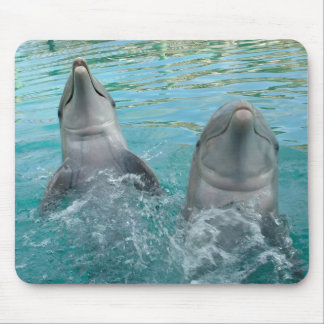 Two Dolphins Mouse Pad