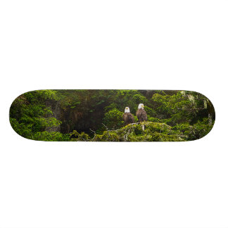 Two Eagles Perched Painterly 20 Cm Skateboard Deck