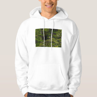Two Eagles Perched Painterly Hoodie