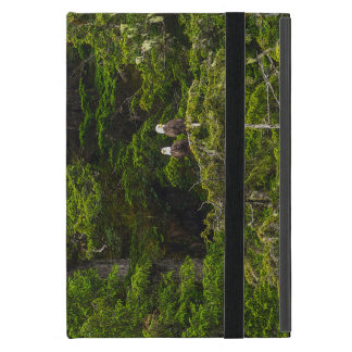 Two Eagles Perched Painterly iPad Mini Cover