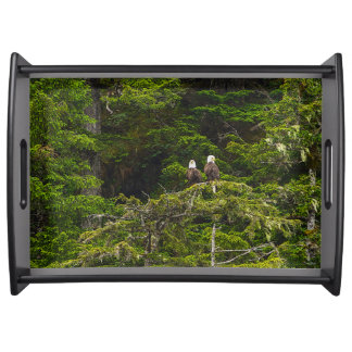 Two Eagles Perched Painterly Serving Tray