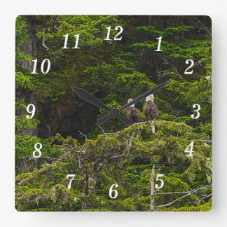Two Eagles Perched Painterly Square Wall Clock