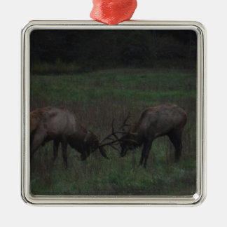 Two Elk  Bulls interlocked in Battle Silver-Colored Square Decoration
