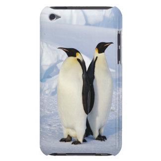Two Emperor Penguins in Antarctica Case-Mate iPod Touch Case