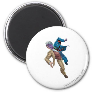 Two Face Falls Magnets