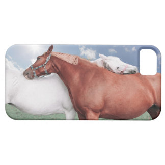 two fell in love horses cover for iPhone 5/5S
