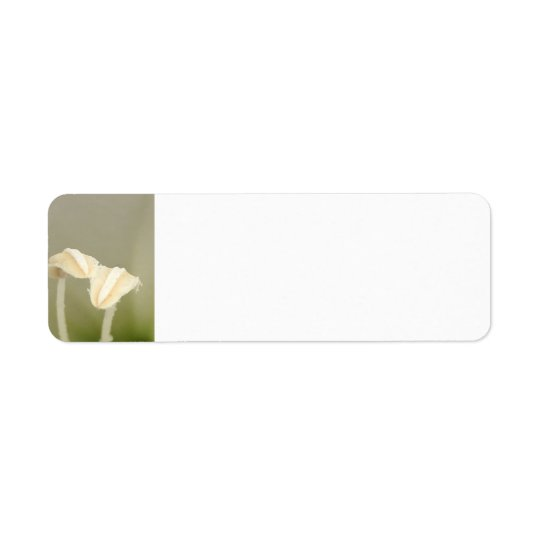 Two Flower Address Label
