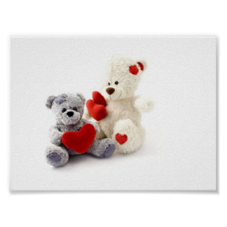 Two Fluffy Teddy Bears On White Background Poster