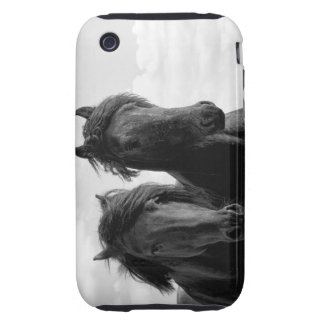 Two Friesian stallions Tough iPhone 3 Covers