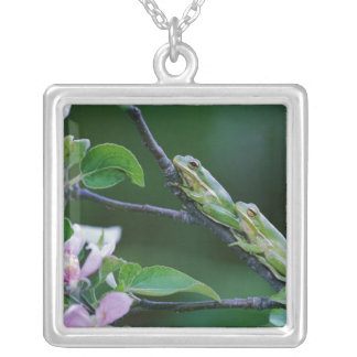Two Frogs on Branch. Credit as: Nancy Square Pendant Necklace