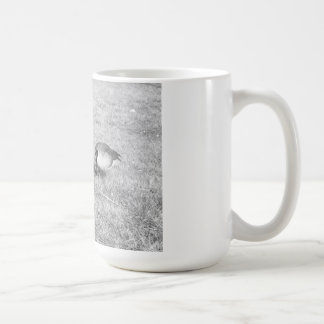 Two geese In the grass. Coffee Mug