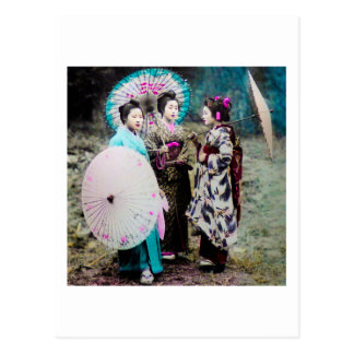 Two Geisha and a Maiko and Parasols Old Japan Postcard