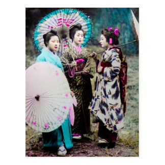 Two Geisha and a Maiko and Parasols Old Japan Postcard
