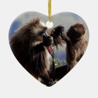 Two gelada baboons (Theropithecus gelada) Ceramic Ornament