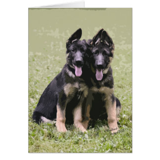 Two German Shepherd Pups Card