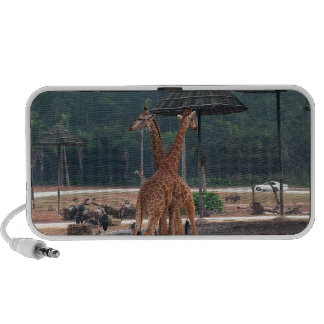 Two giraffes comforting each other in a zoo portable speakers