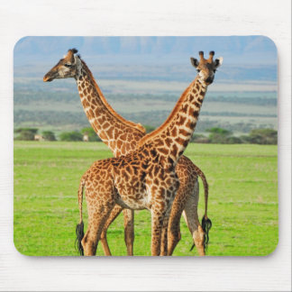 Two Giraffes Mouse Pad