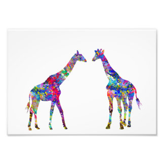 Two Giraffes Photo Print