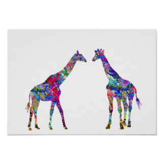 Two Giraffes Poster