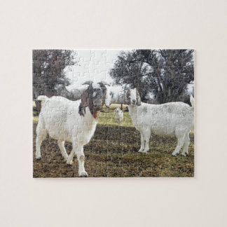 Two Goats Jigsaw Puzzle
