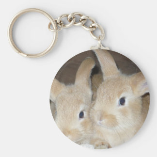 Two Golden Bunnies Keychain