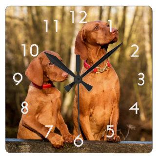 Two Golden Rust Vizsla Dogs Wall Clock