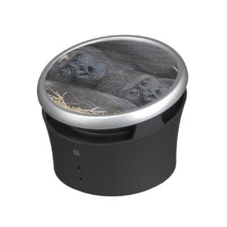 Two Gorillas Bluetooth Speaker