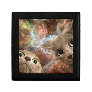 Two Gray Cats in Space Before a Nebula Gift Box